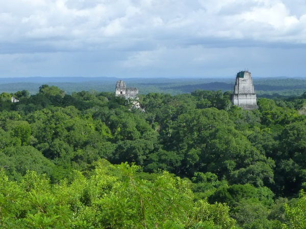 Tikal view from the jungle